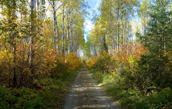 Beadmore ON, Canada